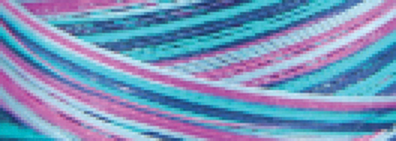 Signature 41 Cotton Variegated Colors 700 Yards-Garden (並行輸入品)   B00C1M85PC