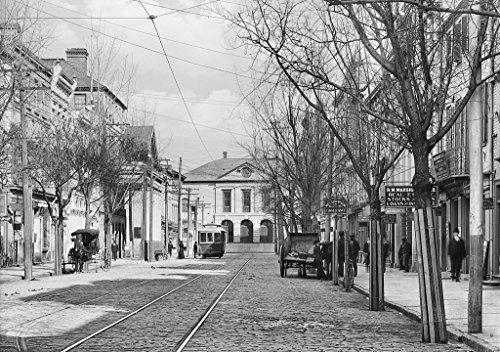 [해외]찰스턴 히스 토 릭 블랙 화이트 사진 동쪽 브로드 스트리트 c1906 16x20in 아래로 보고 / Charleston Historic Black & White Photo Looking Down East Broad Street c1906 16x20in