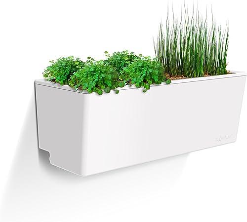 Glowpear self watering Mini Wall Planter product image