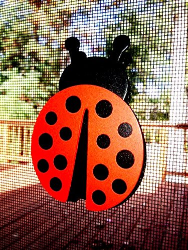 Screen Magnets (Screen Door Saver Magnets- These 2 1/2