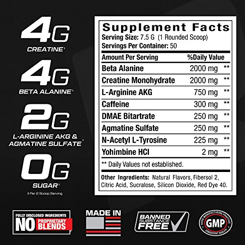 Reign Velocity+ Pre Workout Powder w/ Creatine - 50 Fruit Punch Servings - Increase Energy & Build Muscle Mass - Quality Strength & BodyBuilding Preworkout Supplement Drink for Men & Women