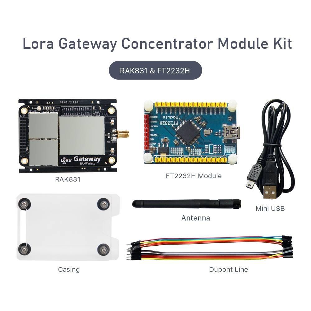RAKWireless Lora Gateway Concentrator Module Kit, SX1301 RAK831 915MHz,  Wireless Spread