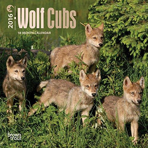 Wolf Cubs - 2016 Mini Wall Calendar 7 x 7in