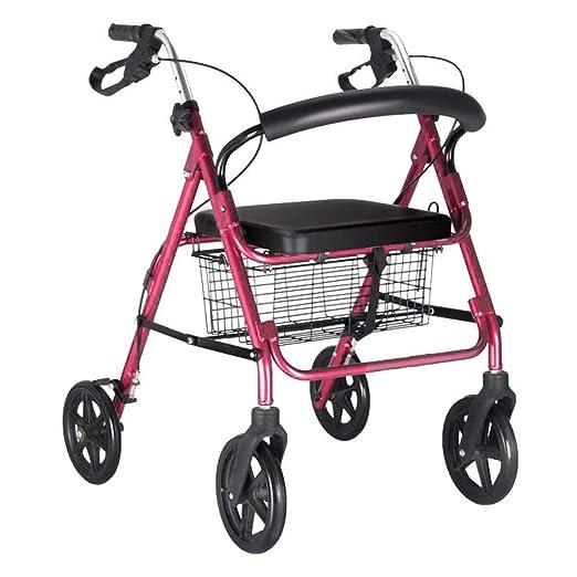 ZXR-Walker Andador Discapacitado Caminar Caminar Caminador ...