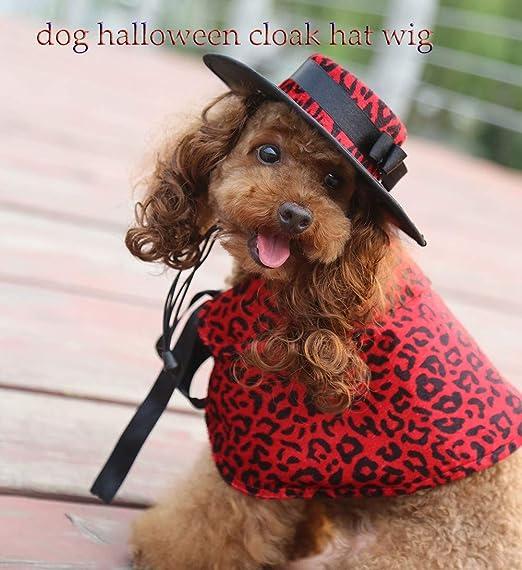 GJQGYY Disfraz Perros Halloween Sombrero con Peluca para Gato ...
