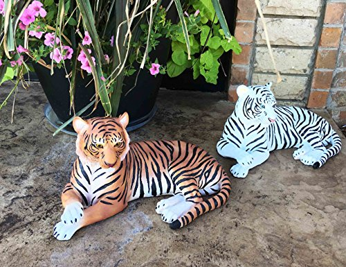 Large Pair of Raja The Royal Bengal Tiger And Ghost The Siberian White Tiger 15.5