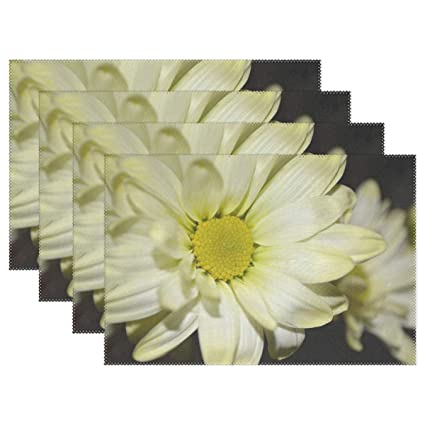 Amazoncom Daisy Flower Petal Petals Bloom Blooming Fresh Placemats