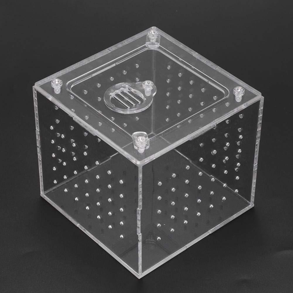 Caja de reproducción de reptiles acrílicos Transparente ...