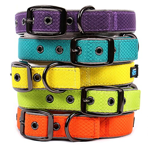 Neo Wide Dog Collar - Max and Neo Glacier Reflective Neoprene Metal Buckle Dog Collar - We Donate a Collar to a Dog Rescue for Every Collar Sold (LARGE, LIME GREEN)