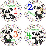 Little LillyBug Designs - Monthly Baby Stickers - Panda Bear - Soccer Ball