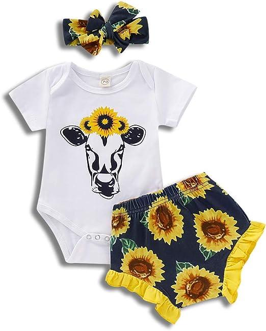 NEW Baby Girls 2 Piece Set Size 3-6 Months Shirt Shorts Outfit Pink Zebra
