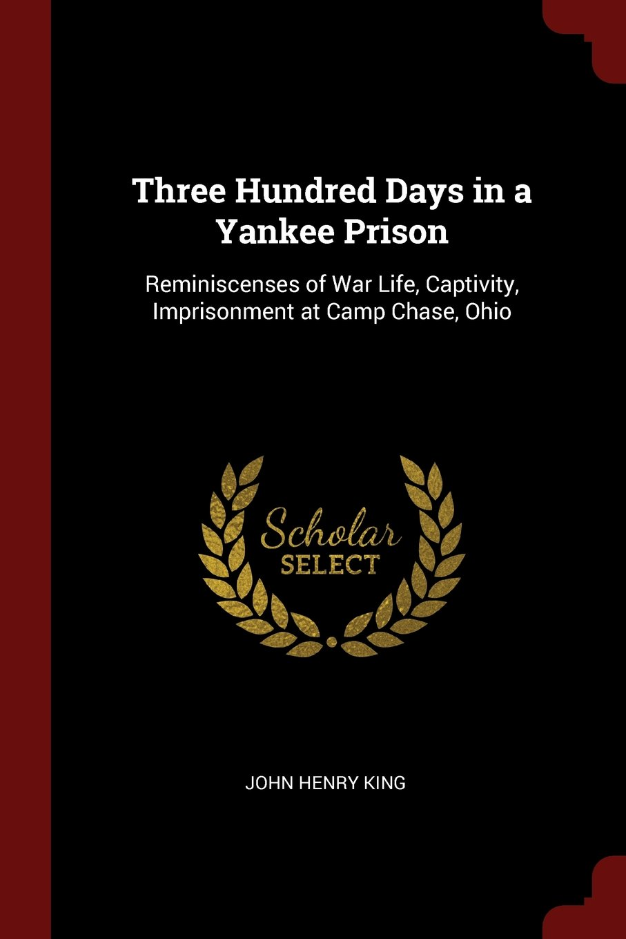 Download Three Hundred Days in a Yankee Prison: Reminiscenses of War Life, Captivity, Imprisonment at Camp Chase, Ohio pdf