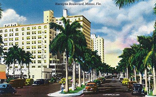Miami, Florida - Biscayne Boulevard Scene (36x54 Giclee Gallery Print, Wall Decor Travel Poster) - Biscayne Wall Lantern