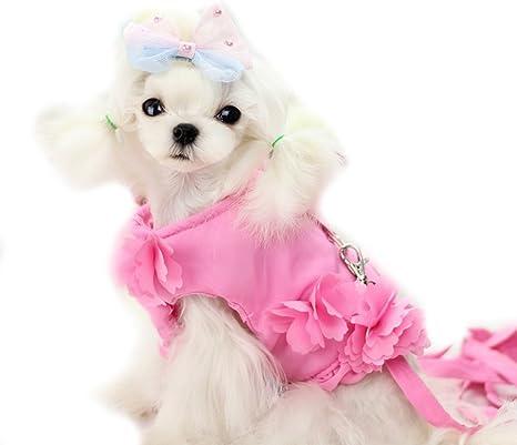 Cute flores pequeñas mascotas perro gato princesa arnés chaleco y ...