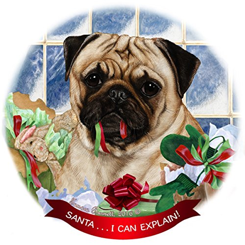 in Hanging Ornament Pet Gift 'Santa.. I Can Explain!' for Christmas Tree and Year Round (Pug Dog Christmas Tree Ornament)