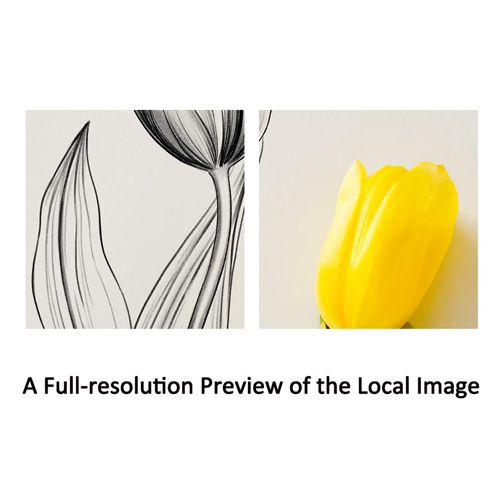 Amazon Sumgar Canvas Wall Art Flowers Drawings Yellow Floral