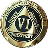 6 Year AA Medallion Elegant Black Gold Silver Bi-Plated Serenity Prayer Chip