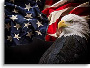 Mon Art-Majestic Bald Eagle on USA Flag Canvas Print Wall Art National Bird Emblem Picture for Office Bedroom Living Room Decoration Artwork Home Decor 12x16x1P,Framed-Black and White