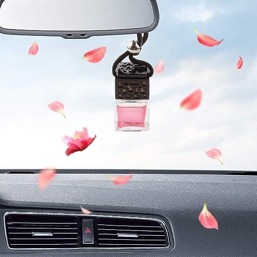 B Blesiya Home Car Hanging Air