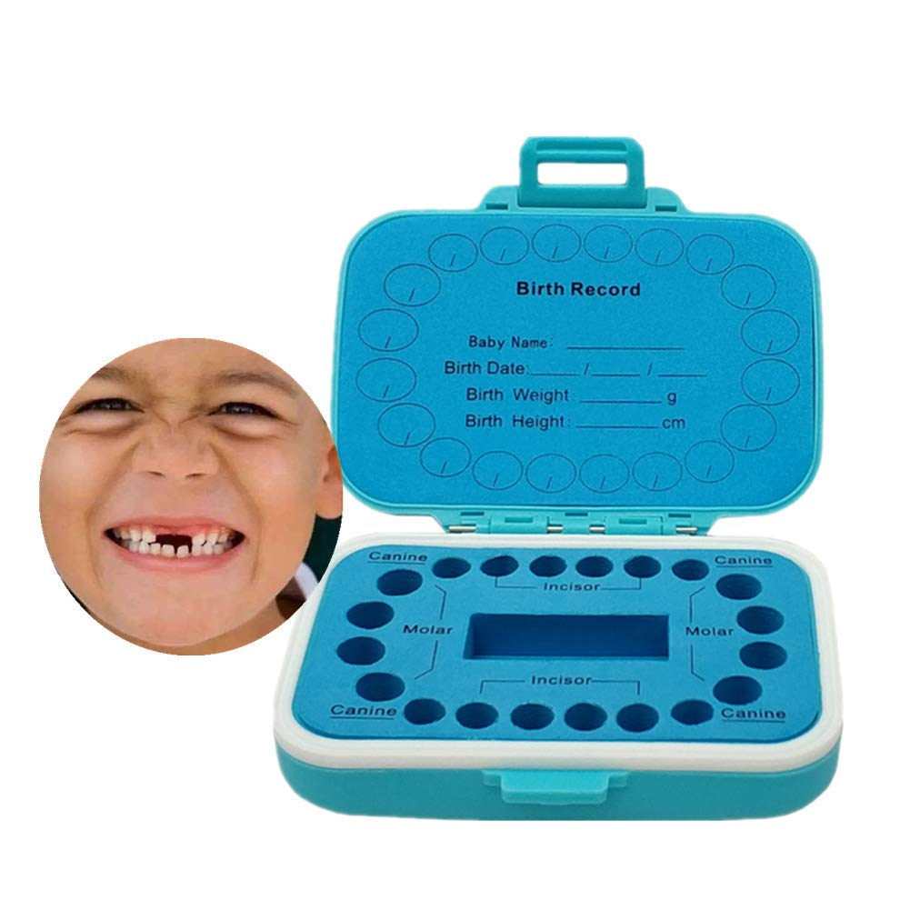Baby Tooth Box Kids Keepsake Organizer PP Cute Children Tooth Fetal Hair Container with English Mark,Blue
