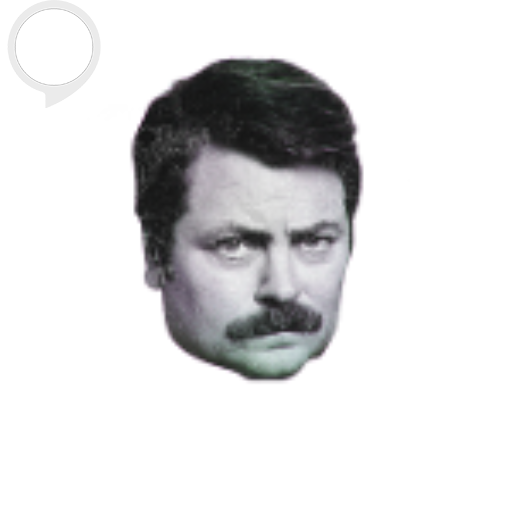 unofficial-ron-swanson