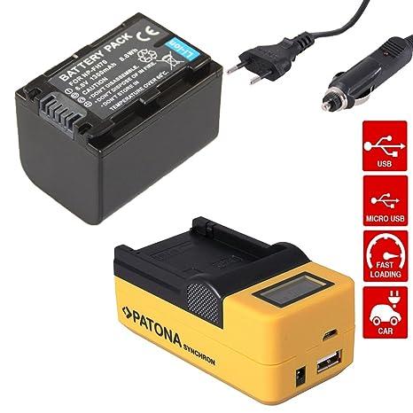 PATONA Synchron USB LCD Cargador rapido + 1x Bateria para ...