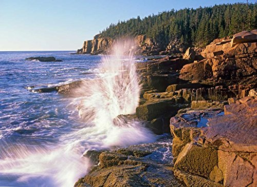 (Posterazzi Poster Print Collection Atlantic Coast Near Thunder Hole Acadia National Park Maine Tim Fitzharris, (9 x 12), Multicolored)