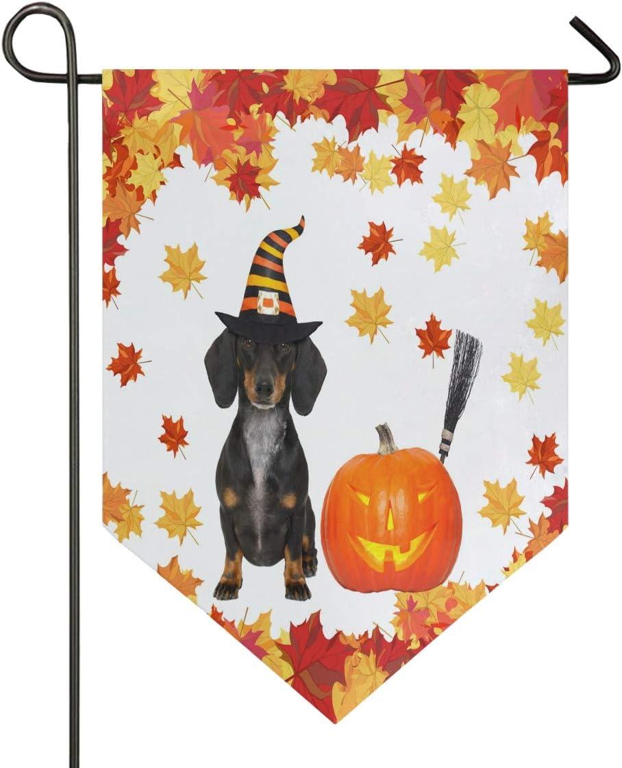Dachshund Halloween Decorations.Amazon Com Oarencol Halloween Devil Sausage Dachshund Dog Pumpikm Maple Leaves Large House Flag Double Sided Home Yard Decorative Garden Banner 28 X 40 Inch Garden Outdoor