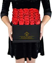 Valentine's Day Collections| Roses with Longevity (Large, Red)