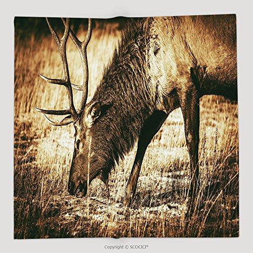 Custom Adult North American Elk Closeup Colorado Wildlife Brown Vintage Color Grading 262869068 Soft Fleece Throw Blanket