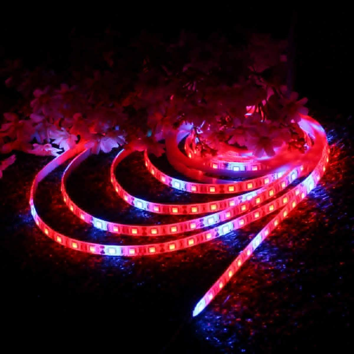 Yuxinmaoyigongsi Retroiluminación LED Strip impermeable rojo: Azul 5: 1 SMD5050 Full Spectrum Grow tira de LED planta ligera 12V DC 0,5 M / 1M / 2M / 3M / 4M / 5M (tamaño : 2m) 0.5m