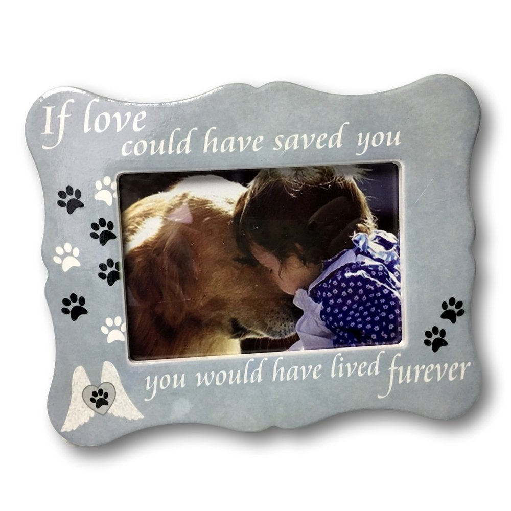 Pet memorial picture frame if love could have saved you pet pet memorial picture frame if love could have saved you pet frame paw prints and angel wings jeuxipadfo Image collections