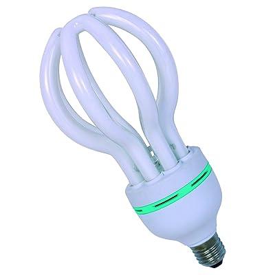 Éclaire S.L.–Basse Consommation 105W-E27Compact 5U lumière froide