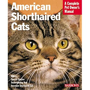 American Shorthair Cats: Everything About Purchase, Care, Nutrition, Health Care, Behavior, and Showing (Complete Pet Owner's Manual) 22