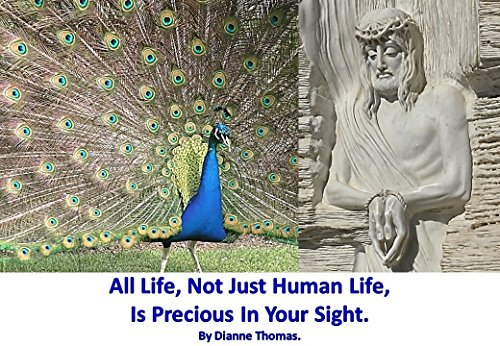 All Life, Not Just Human Life, Is Precious In Your Sight. (Blessed Catholic Trinity)