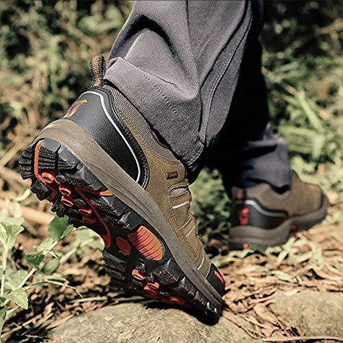 FuweiEncore FuweiEncore da da da Outdoor Trekking in da per da Dimensione 38EU Scarpe Trekking Lavoro Occasionale Trekking Uomo Pelle Scarpe Ginnastica da Allenamento Scarpe Colore 4 rrCqgwY
