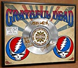GRATEFUL DEAD LIMITED EDITION SIGNATURE LASER ETCHED PLATINUM RECORD POSTER ART DISPLAY