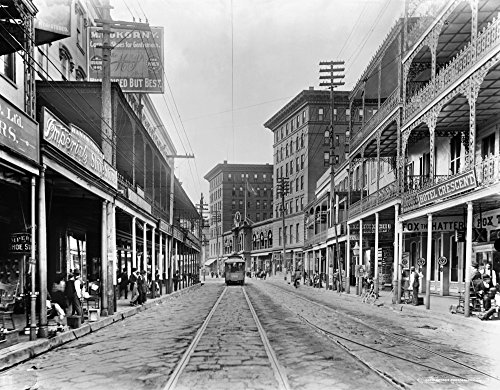 - New Orleans Street Scene Na View Of St Charles Avenue In New Orleans Louisiana Photographed C1895 Poster Print by (18 x 24)