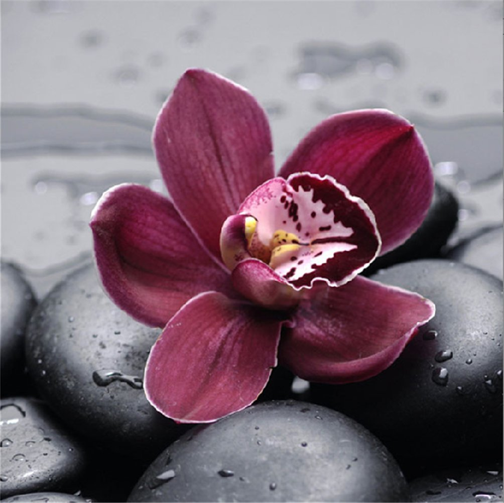 YEESAM ART New 5D Diamond Painting Kit - Purple Orchid - DIY Crystals Diamond Rhinestone Painting Pasted Paint by Num