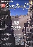 NHKスペシャル 新シルクロード 第4巻