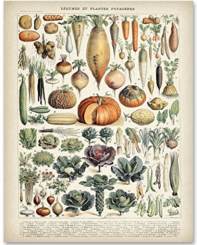 Antique Heirloom Vegetables - 11x14 Unframed Art Print - Great Gift for Kitchen Decor Crystal Heirloom Frame