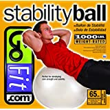 GoFit Exercise Ball
