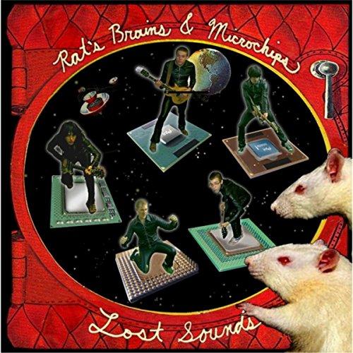 Rats Brains & Microchips