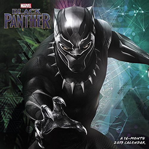 Book cover from Black Panther Wall Calendar (2019) by Day Dream