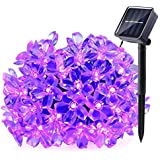 Qedertek Solar Christmas String Lights, 21ft 50 LED Halloween Purple String Lights, Fairy Blossom Lights String, Xmas Decorations for Indoor Outdoor, Home, Garden, Patio, Party and Xmas Trees Purple