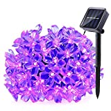 Qedertek Solar String Lights, 21ft 50 LED Flower Blossom Christmas Ligghting, Halloween Decorative Lights for Outdoor, Home, Lawn, Garden, Patio, Party and Holiday Decorations (Purple)