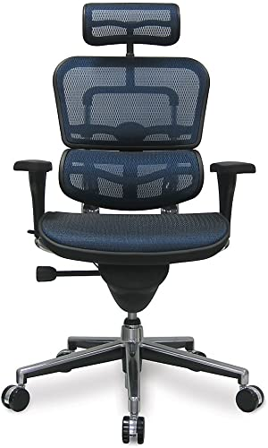 Ergohuman High Back Executive Chair