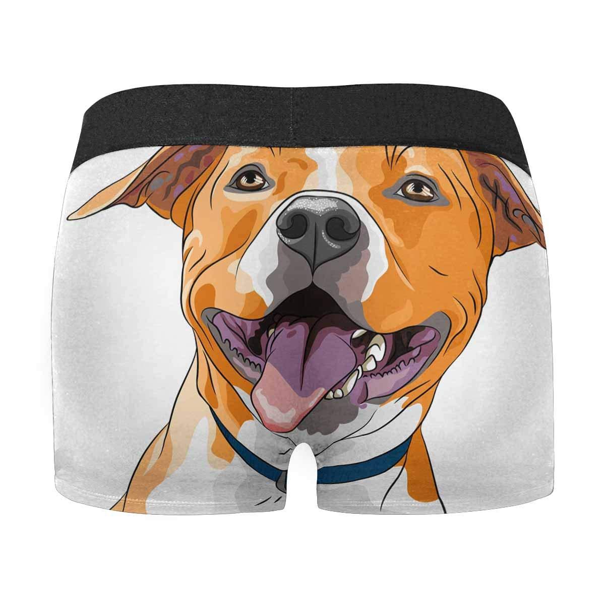 INTERESTPRINT Custom Mens Boxer Briefs Underwear XS-3XL