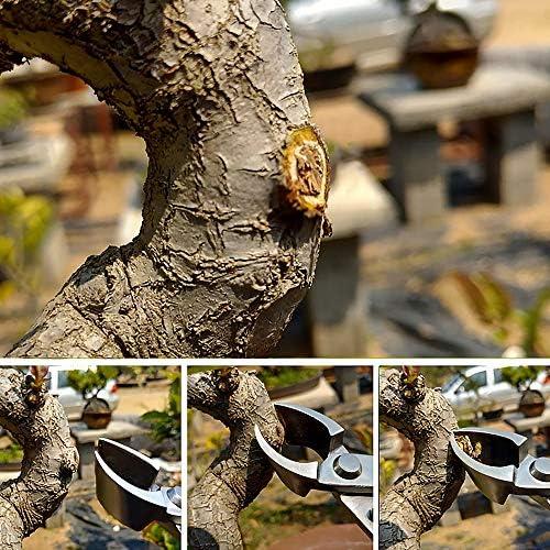 Ensemble d'outils Bonsai de 7 pièces Bonsai Coupe Cisaille Kit Durable Bonsai Jardin Indoor Plant Care Ciseaux Couper Outil Multifonctionnel