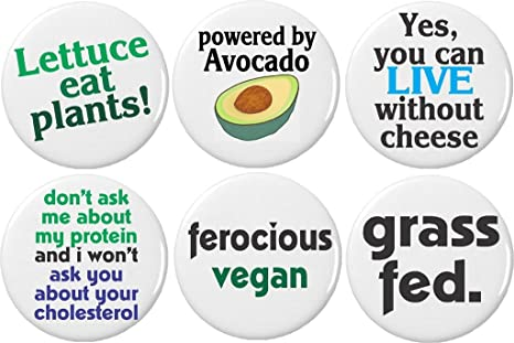 Set 6 Cute Funny Vegan Quotes Sayings 225 Large Magnets Lettuce Avocado Grass Fed